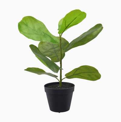 ARTPLANT BANANA PLANT