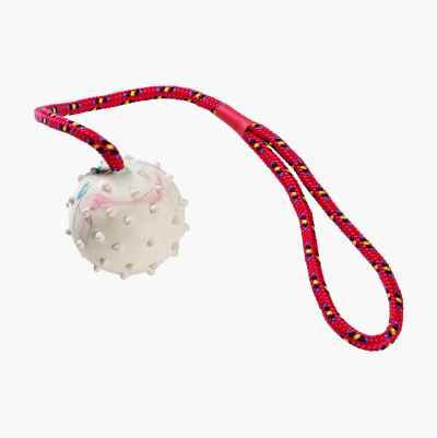 BALL W STRING, DOGTOY
