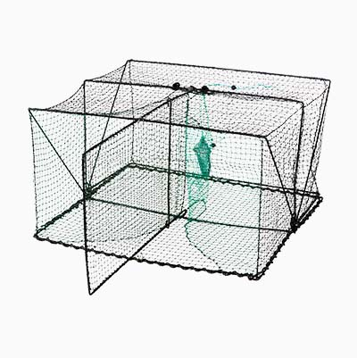 Collapsible Fish Trap