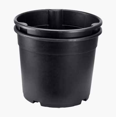 Potato Pot 12 L