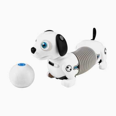 Robothund