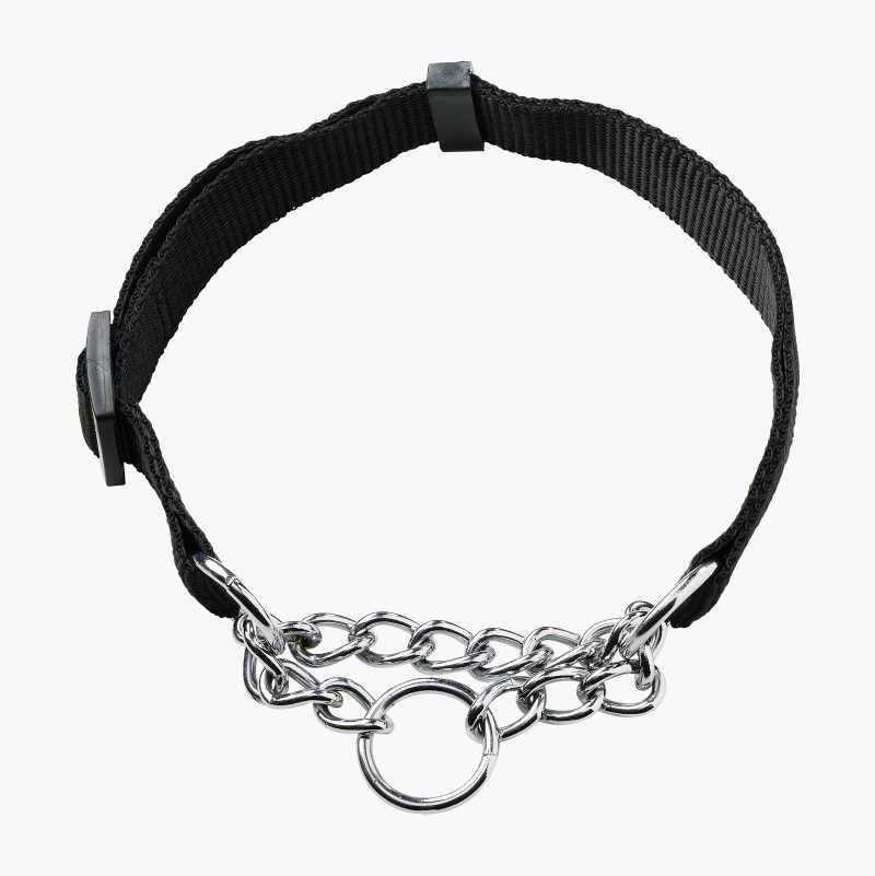 Reflective Collar and Leash