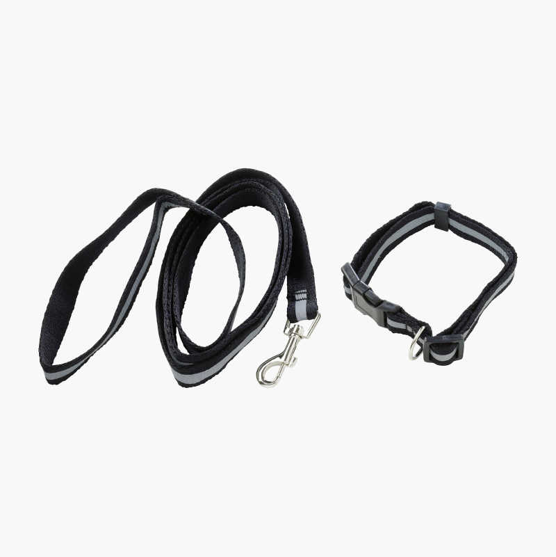 Reflective Collar and Leash