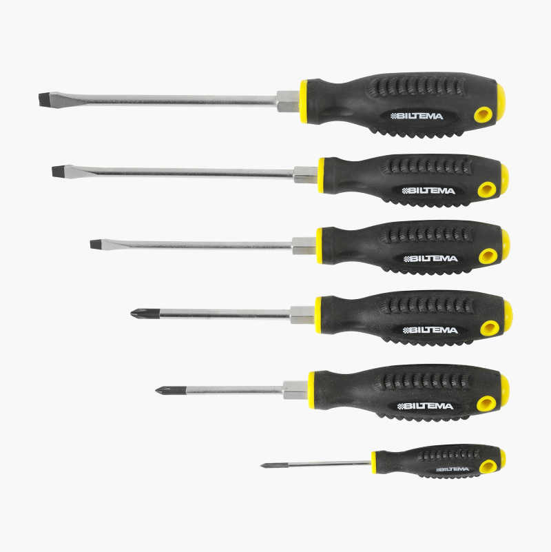 Screwdriver set, 6 pcs