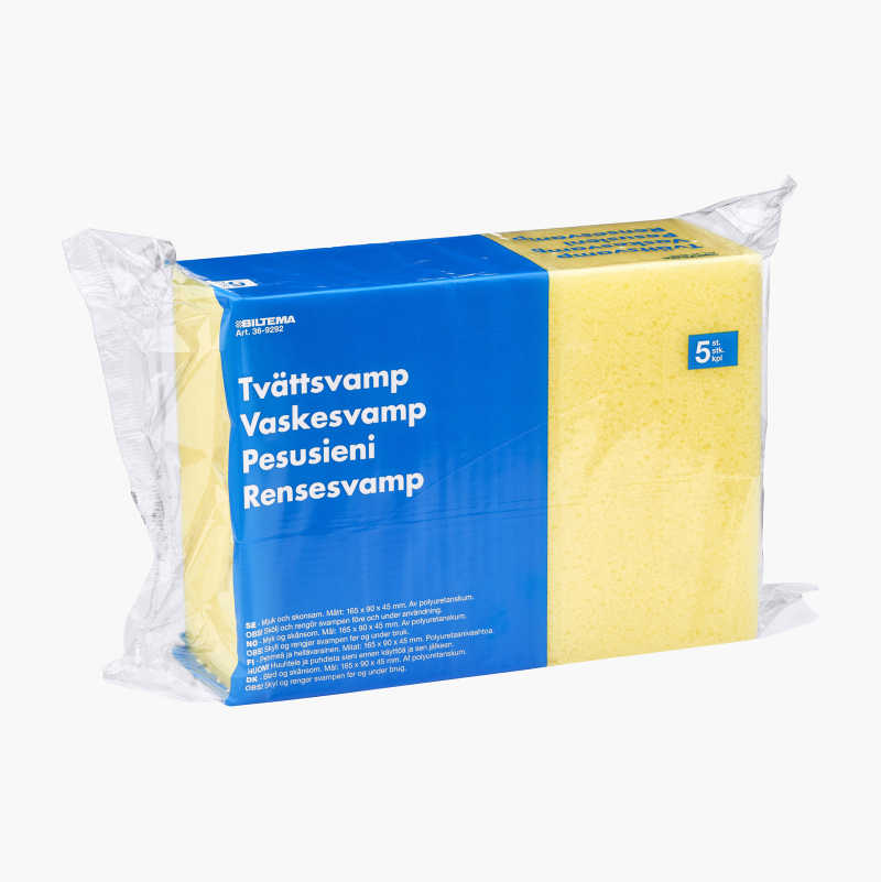 Washing sponges, 5 pcs