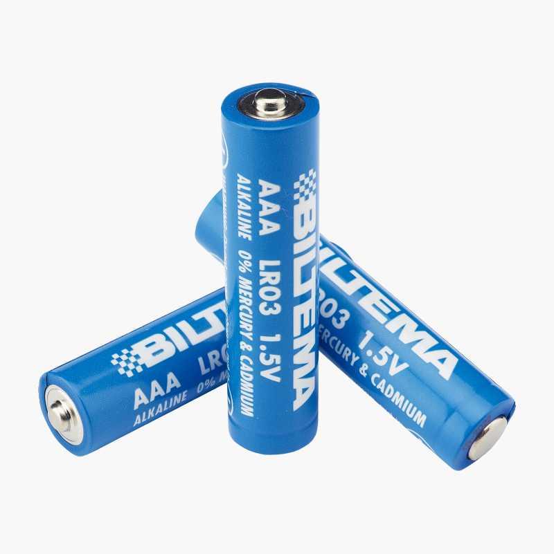 AAA/LR03 Alkalisk batteri, 10-pak