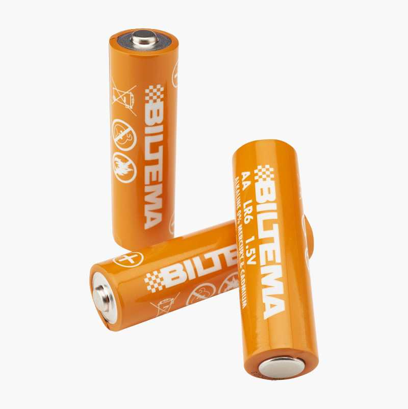 AA/LR6 Alkaline Batteries, 10-pack
