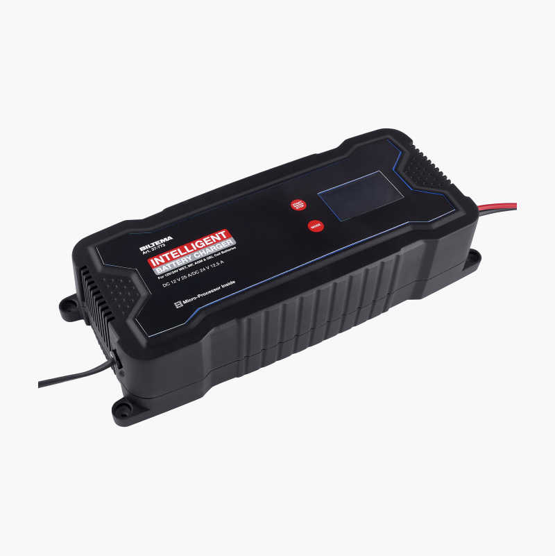 Battery Charger 12/24 V, 25 A