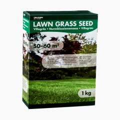 Domestic household grass seed